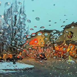 A Rainy Kind of Day by Linda Bielko