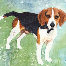 A Regal Beagle by Conni Schaftenaar