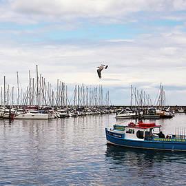 A Shot of Brixham Harbor, Devon, England, GB, UK by Derrick Neill