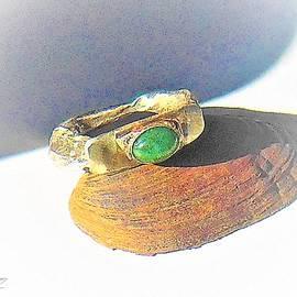 A Slanted Ring by Samuel Zylstra