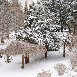 A Snowy Winter Day by Trina Ansel