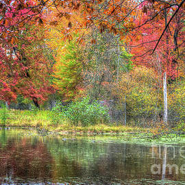 A Sprinkling of Color by Deborah Klubertanz