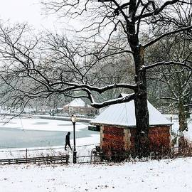 A Stroll by the Pond - Central Park in Winter by Miriam Danar