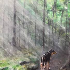 A Sunlit Walk With Willie by Diane Donati