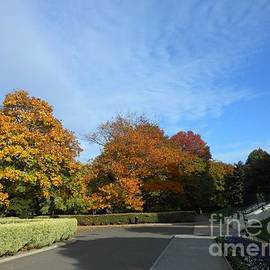 A Sunny Day in Autumn by Kathryn Jones