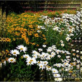 A Thousand Eyes - Floral Vignette  by Kathryn Jones