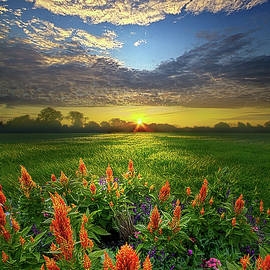 A Time To Keep by Phil Koch