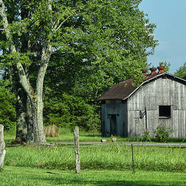 A Touch of Country by Tricia Marchlik