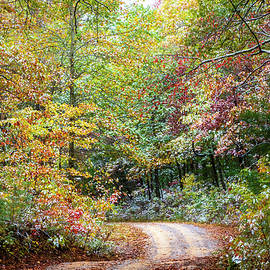A Touch of Snow in Autumn by Debra and Dave Vanderlaan