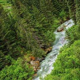 A Train View Of Skagway River by Robert Bales