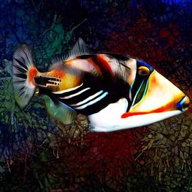 A Triggerfish Painting by Scott Wallace Digital Designs