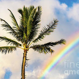 A Tropical State of Mind by Phillip Espinasse