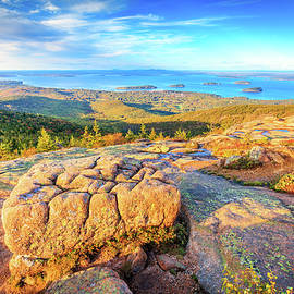 A view from Cadillac Mountain by Alexey Stiop
