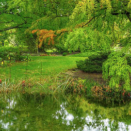 A View of the Arboretum by Kathi Isserman