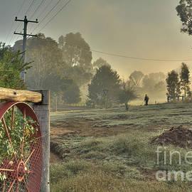 A Walk in the Mist by Elaine Teague