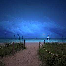 A Whisper of Moonlight by Mark Andrew Thomas