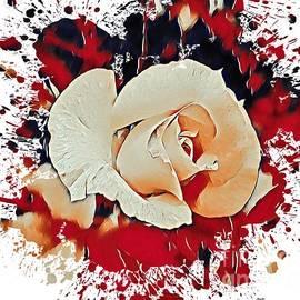 A White Rose by Eloise Schneider Mote