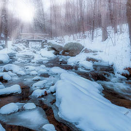 A Winter Morning by Bill Wakeley