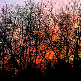 A Winter Sunrise by Denise Harty