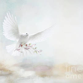 A Wish For Peace by Kelley Freel-Ebner