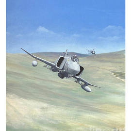 A4 Alley Falklands by Kenny Reeves
