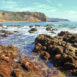 Abalone  Cove by Debra Farrey