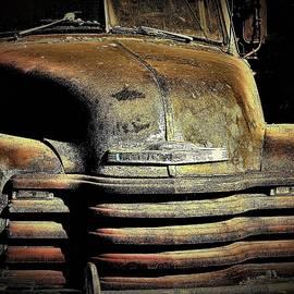 Abandoned Chevrolet Truck by Elizabeth Pennington