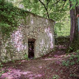 Abandoned Farmhouse Lake Como Italy by Joan Carroll