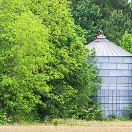 Abandoned Grain Bin - Eastern North Carolina by Bob Decker