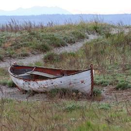 Abandoned Row Boat by Scarola Photography