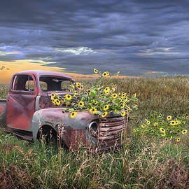 Abandoned Vintage Ford Truck with Blackeyed Susan Yellow Flowers by Randall Nyhof