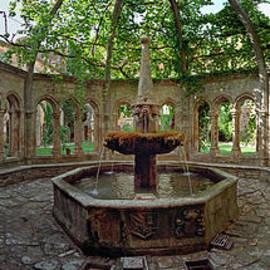 Abbey of Valmagne Fountain by David Zanzinger