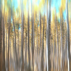 Abstract Aspen Pale Lemons and Blues by Carol Japp