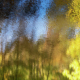 Abstract Autumn woodland reflected in flowing water by Fem Entangled