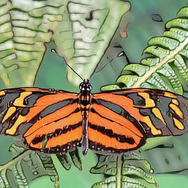 Abstract Butterfly by MaryJane Sesto