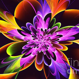 Abstract Chrysanthemum by Galina Lavrova