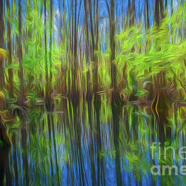Abstract Cypress Swamp Reflections, Florida, Painterly by Liesl Walsh