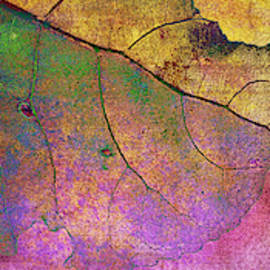 Abstract Leaves Triptych
