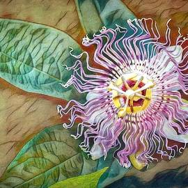 Abstract Maypop Passion Flower by Marilyn DeBlock