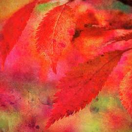 Abstract Red Leaves Two by Mo Barton