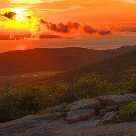 Acadia Sunrise- Cadillac Mountain by Stephen Vecchiotti