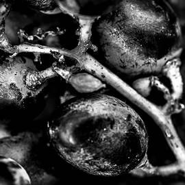 Grapes by Al Fio Bonina