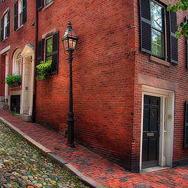 Acorn St. in Summer by Joann Vitali