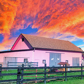 Actual pink barn by Randall Branham