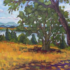 Ada's View by Tara D Kemp