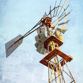 Aermotor Windmill by Mary Lee Dereske