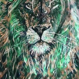African Lion  by Michael African Visions