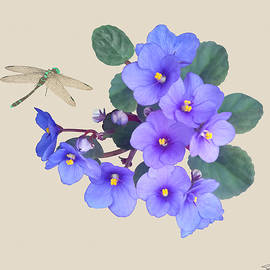 African Violet and Dragonfly by Spadecaller