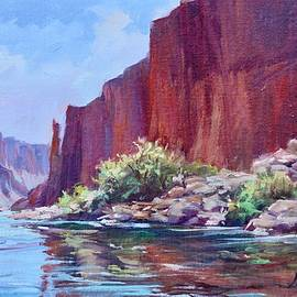 Afternoon Caynon Glow, Colorado River by Laurie Snow Hein