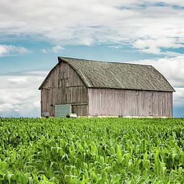 Aged Wooden Barn by Todd Klassy
